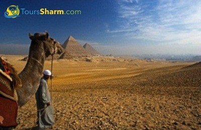 Cairo excursion by bus from sharm