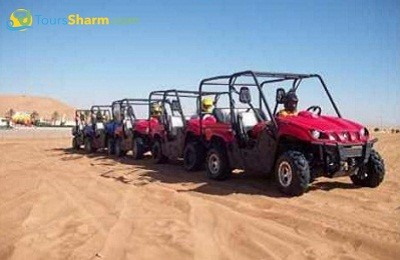 Rhino Safari Tour Sharm el-Sheikh