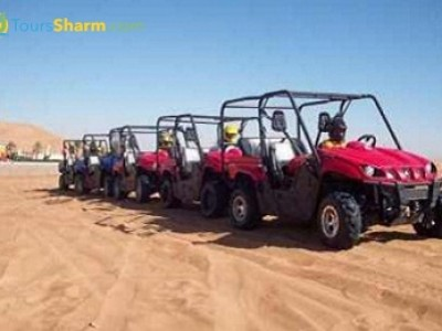 Rhino Safari Tour Sharm el-Sheikh
