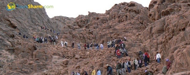 Moses Mountain excursion from Sharm el-Sheikh