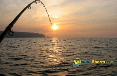 Fishing in Red Sea