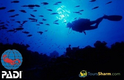 PADI Scuba Diving open water course