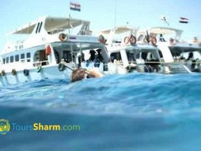 Tiran Island by Boat from Sharm El-Sheikh